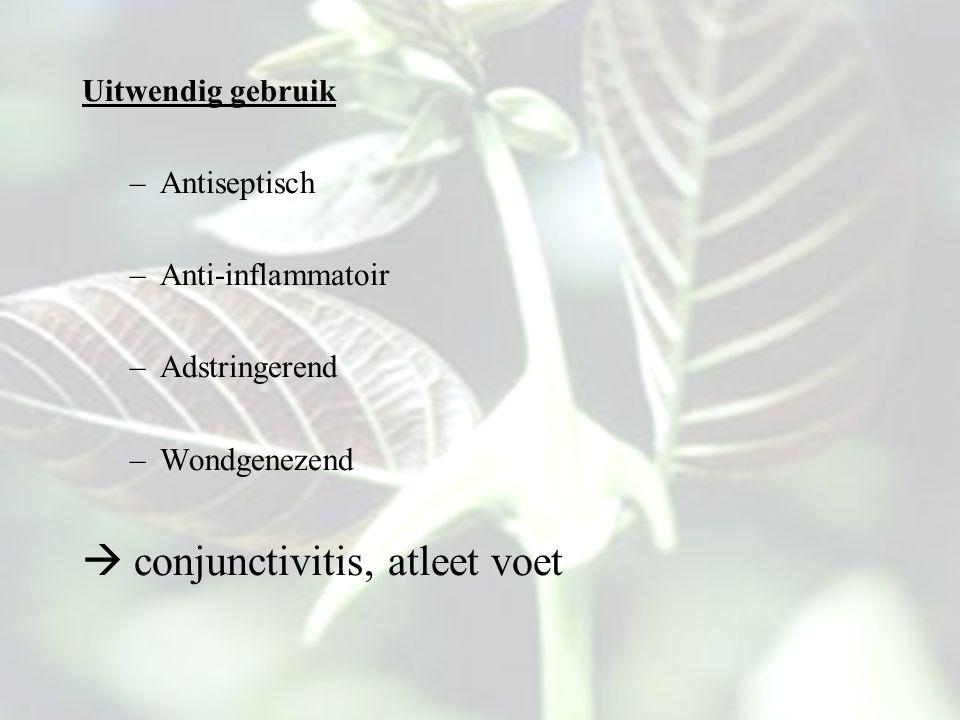 Uitwendig gebruik –Antiseptisch –Anti-inflammatoir –Adstringerend –Wondgenezend  conjunctivitis, atleet voet
