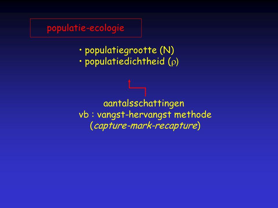 populatie-ecologie populatiegrootte (N) populatiedichtheid (  ) aantalsschattingen vb : vangst-hervangst methode (capture-mark-recapture)
