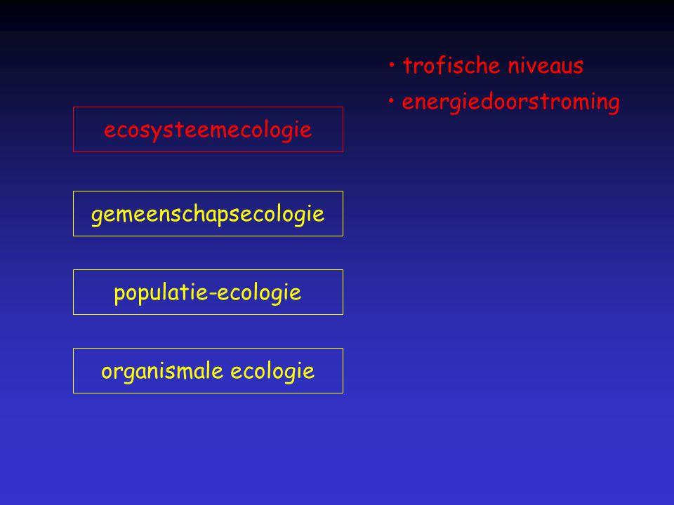 organismale ecologie populatie-ecologie gemeenschapsecologie ecosysteemecologie trofische niveaus energiedoorstroming