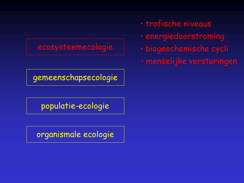 organismale ecologie populatie-ecologie gemeenschapsecologie ecosysteemecologie trofische niveaus energiedoorstroming biogeochemische cycli menselijke