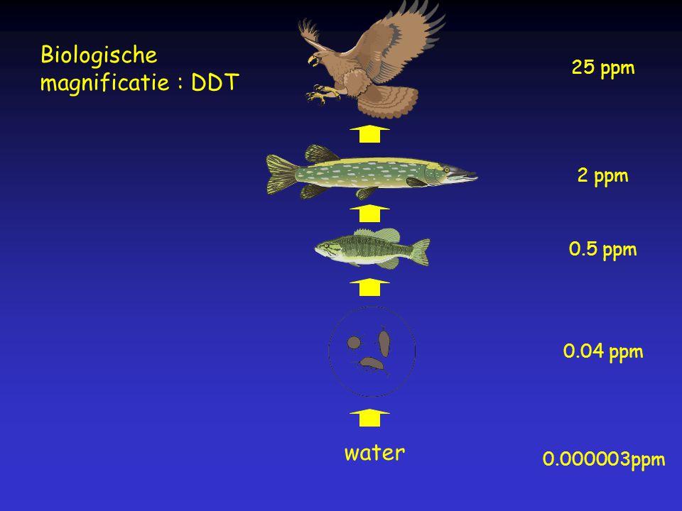 water 0.000003ppm 0.04 ppm 0.5 ppm 2 ppm 25 ppm Biologische magnificatie : DDT