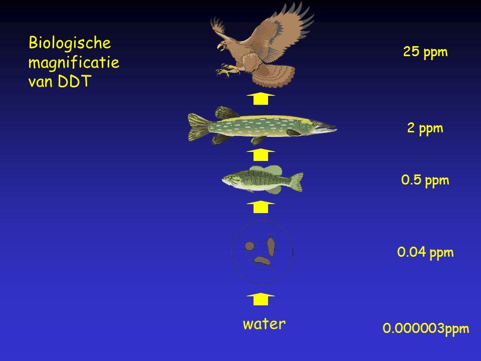 water 0.000003ppm 0.04 ppm 0.5 ppm 2 ppm 25 ppm Biologische magnificatie van DDT