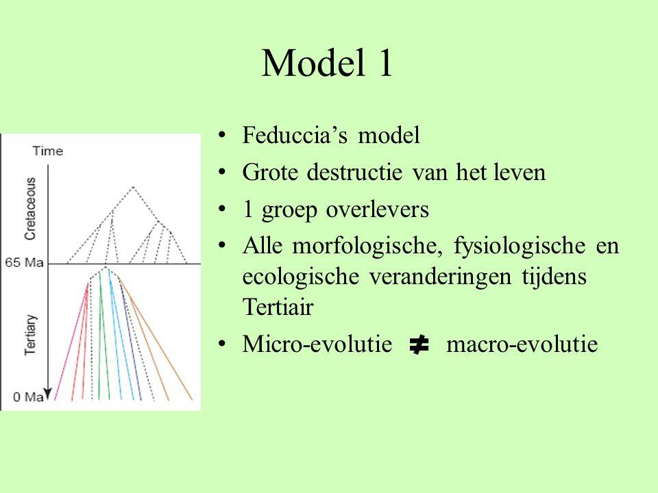 Model 1 Feduccia's model Grote destructie van het leven 1 groep overlevers Alle morfologische, fysiologische en ecologische veranderingen tijdens Tert