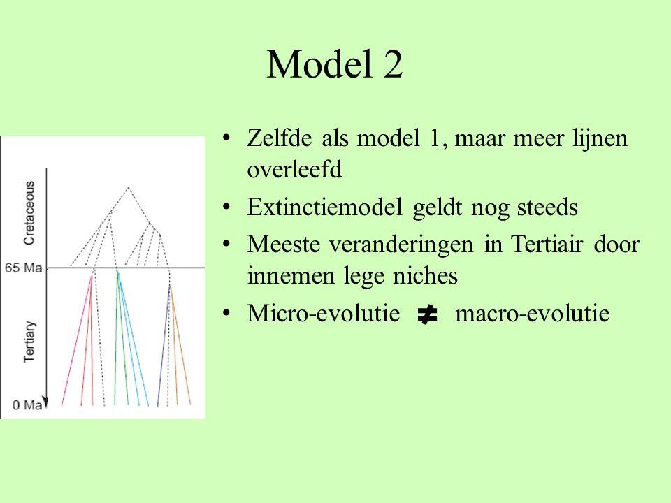 Model 2 Zelfde als model 1, maar meer lijnen overleefd Extinctiemodel geldt nog steeds Meeste veranderingen in Tertiair door innemen lege niches Micro