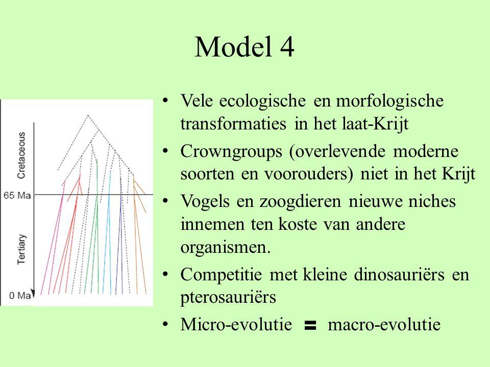 Model 4 Vele ecologische en morfologische transformaties in het laat-Krijt Crowngroups (overlevende moderne soorten en voorouders) niet in het Krijt V