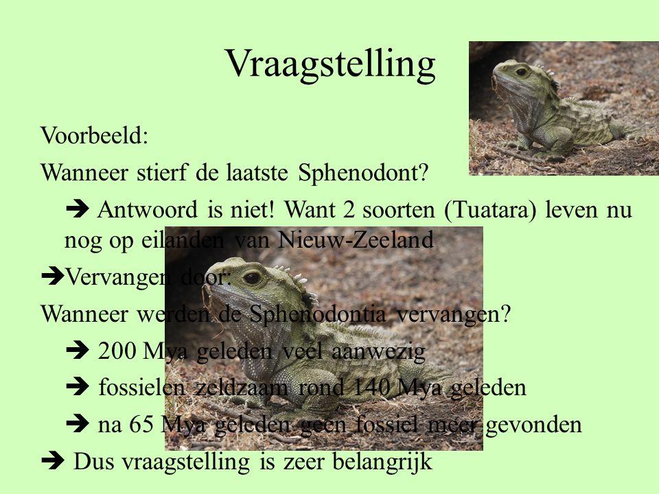 Vraagstelling Voorbeeld: Wanneer stierf de laatste Sphenodont?  Antwoord is niet! Want 2 soorten (Tuatara) leven nu nog op eilanden van Nieuw-Zeeland