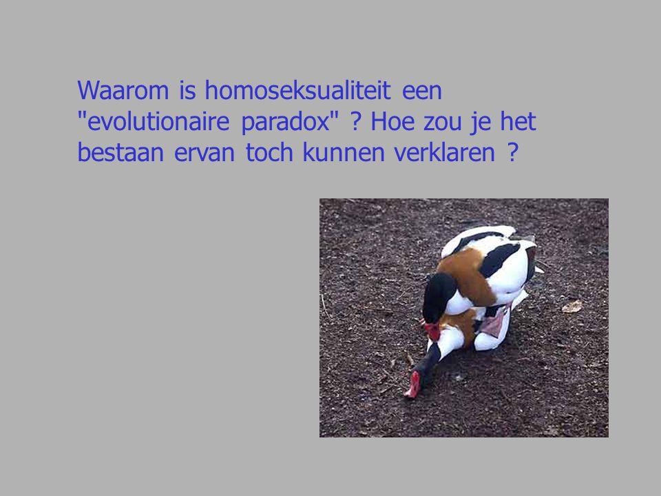 Waarom is homoseksualiteit een