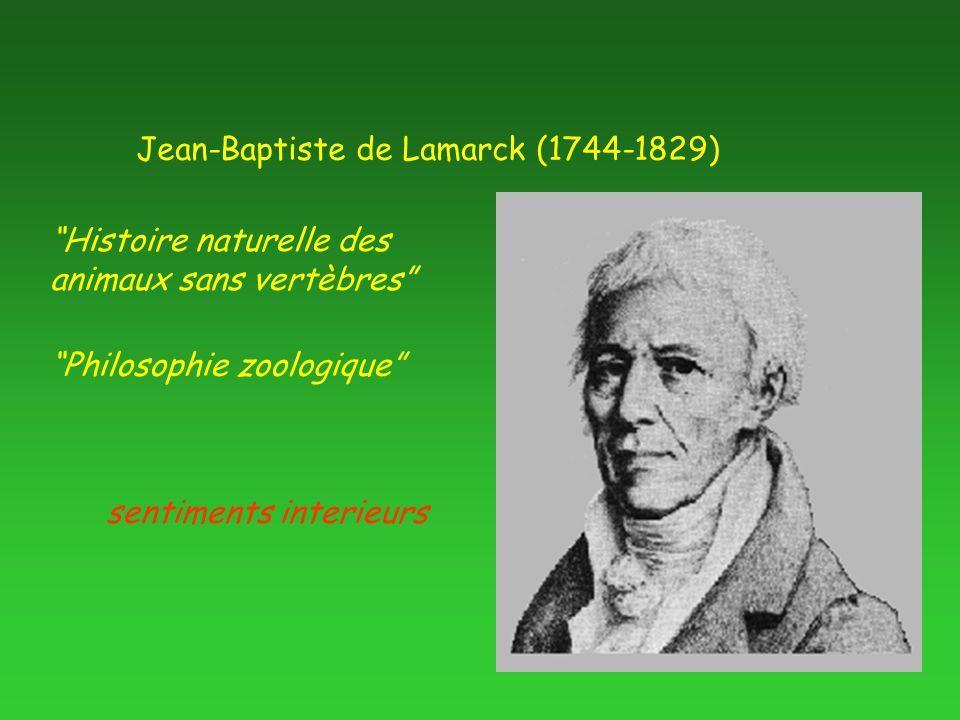 """Jean-Baptiste de Lamarck (1744-1829) """"Histoire naturelle des animaux sans vertèbres"""" """"Philosophie zoologique"""" sentiments interieurs"""