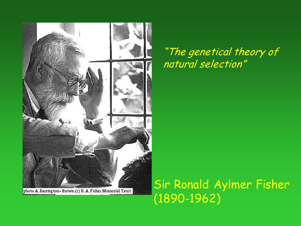 Sir Ronald Aylmer Fisher (1890-1962) The genetical theory of natural selection
