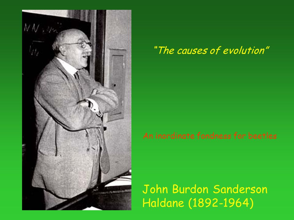 John Burdon Sanderson Haldane (1892-1964) The causes of evolution An inordinate fondness for beetles