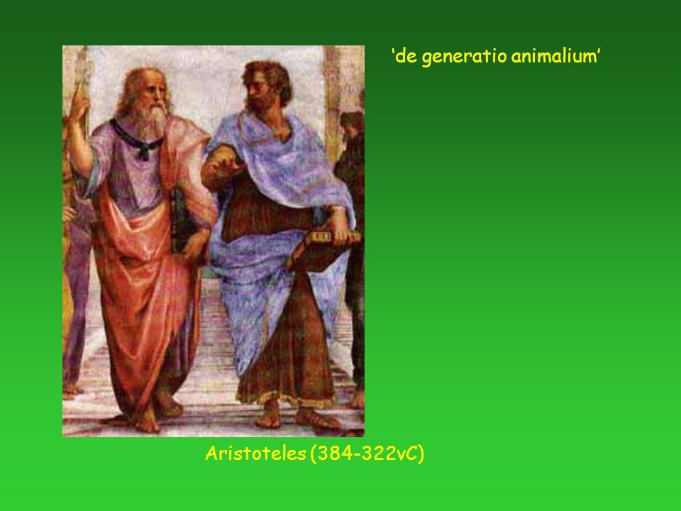 Aristoteles (384-322vC) 'de generatio animalium'
