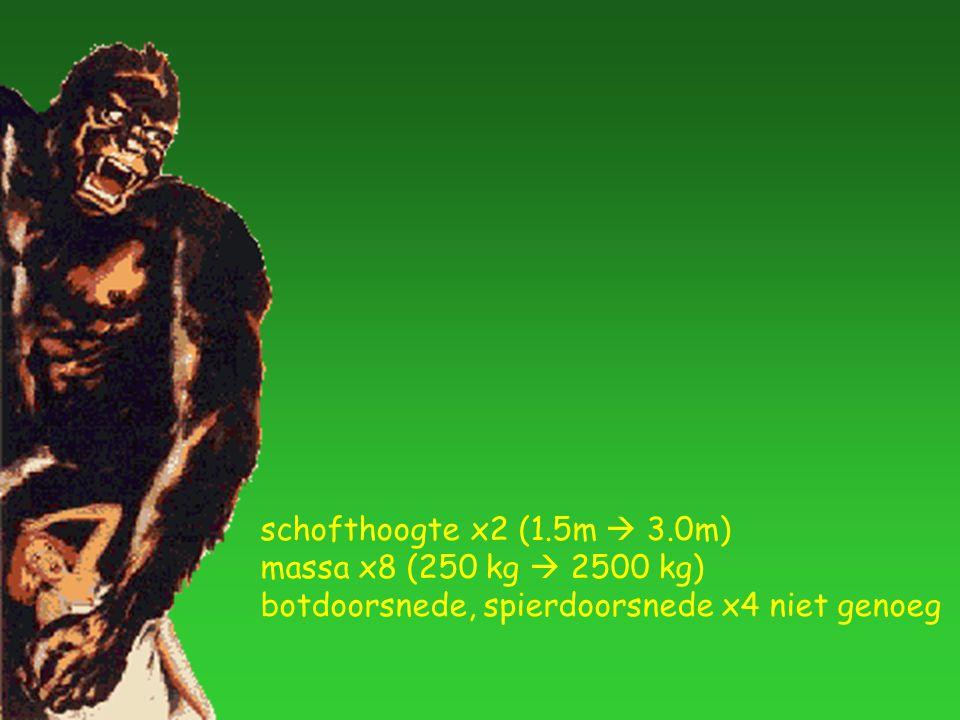 schofthoogte x2 (1.5m  3.0m) massa x8 (250 kg  2500 kg) botdoorsnede, spierdoorsnede x4 niet genoeg
