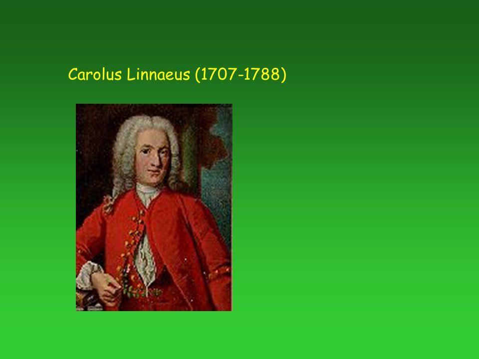Carolus Linnaeus (1707-1788)