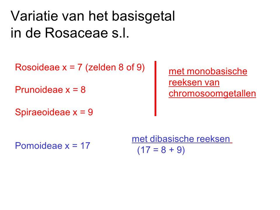 Rosoideae x = 7 (zelden 8 of 9) Prunoideae x = 8 Spiraeoideae x = 9 Pomoideae x = 17 met monobasische reeksen van chromosoomgetallen met dibasische re