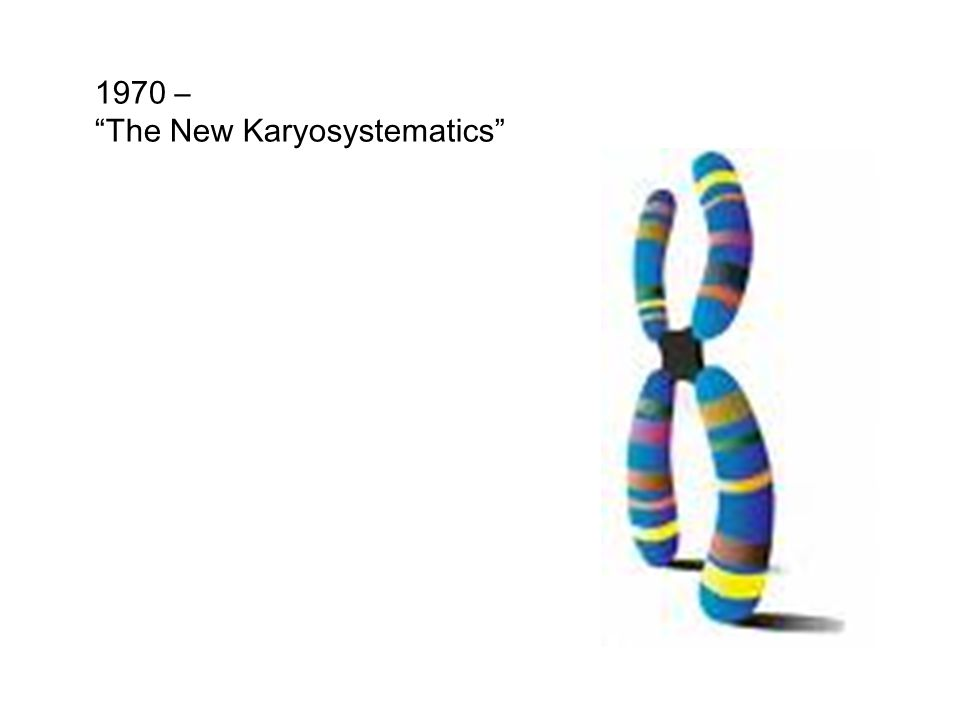 1970 – The New Karyosystematics