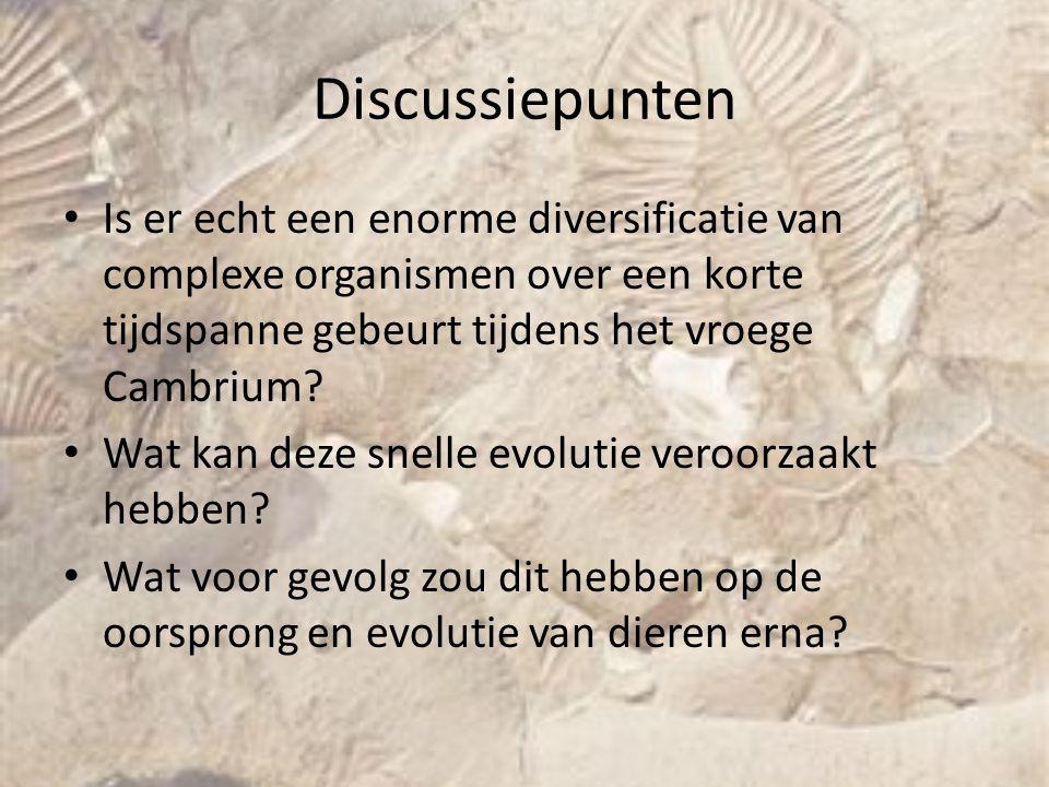 Discussiepunten Is er echt een enorme diversificatie van complexe organismen over een korte tijdspanne gebeurt tijdens het vroege Cambrium? Wat kan de