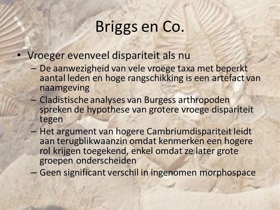 Briggs en Co. Vroeger evenveel dispariteit als nu – De aanwezigheid van vele vroege taxa met beperkt aantal leden en hoge rangschikking is een artefac