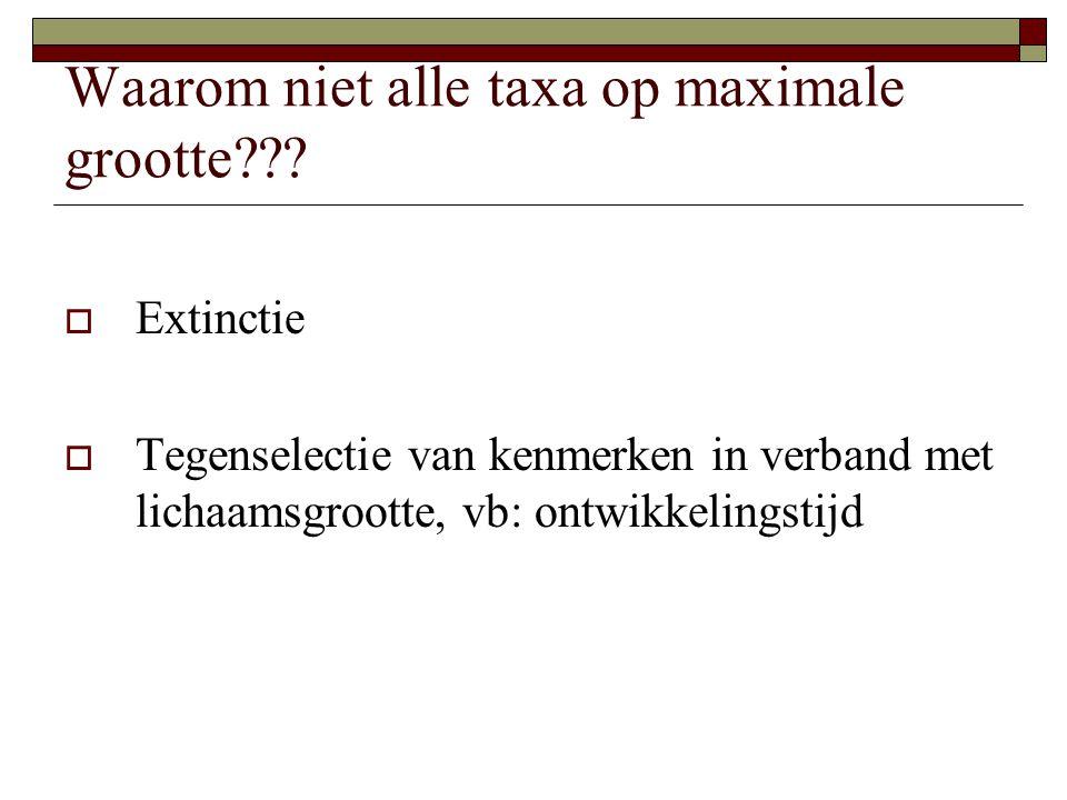 Waarom niet alle taxa op maximale grootte??.