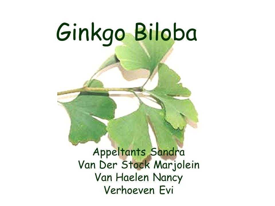 Ginkgo Biloba Appeltants Sandra Van Der Stock Marjolein Van Haelen Nancy Verhoeven Evi