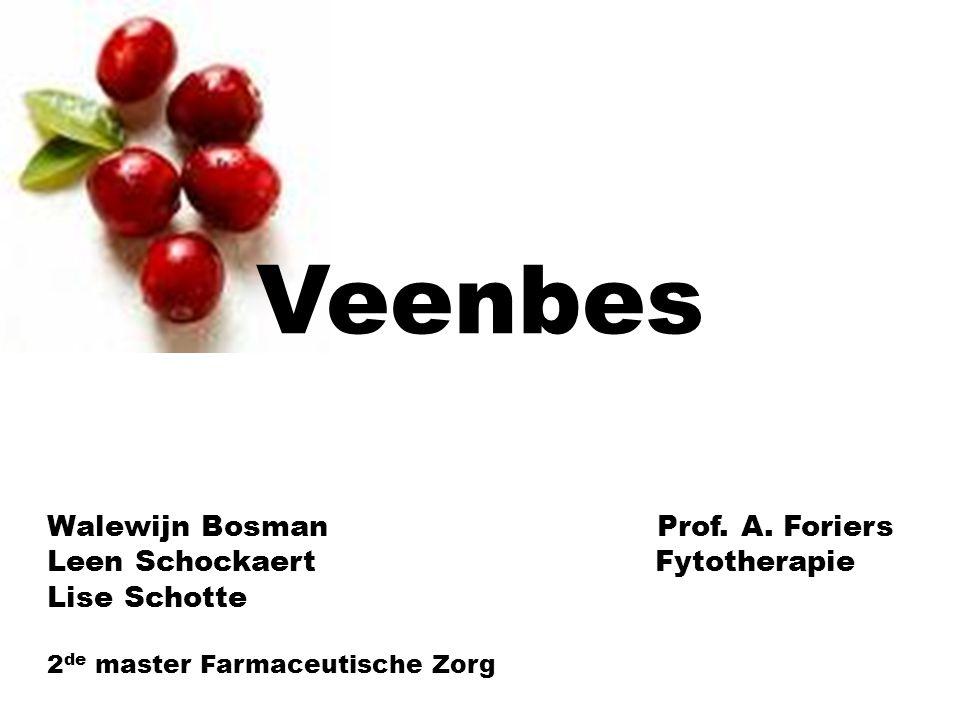 Veenbes Walewijn Bosman Prof.A.