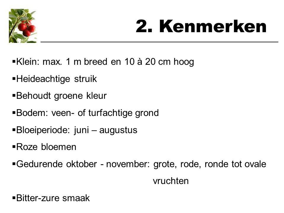 2.Kenmerken  Klein: max.