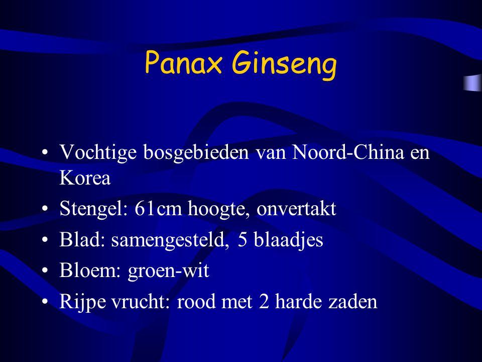 Panax Ginseng Vochtige bosgebieden van Noord-China en Korea Stengel: 61cm hoogte, onvertakt Blad: samengesteld, 5 blaadjes Bloem: groen-wit Rijpe vrucht: rood met 2 harde zaden