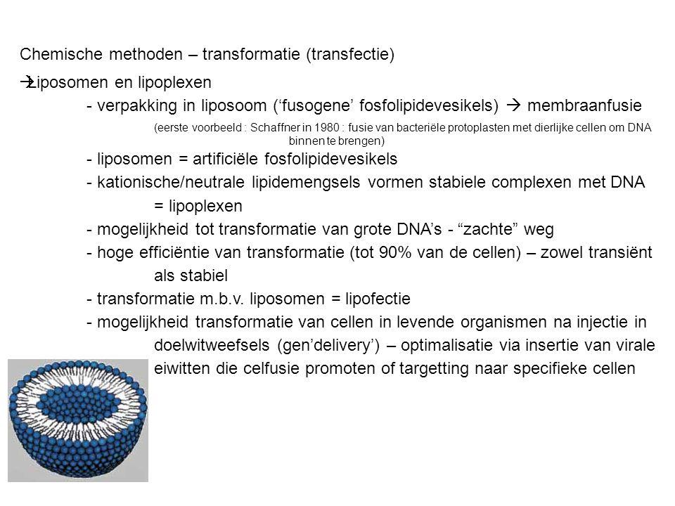 Chemische methoden – transformatie (transfectie)  Liposomen en lipoplexen - verpakking in liposoom ('fusogene' fosfolipidevesikels)  membraanfusie (