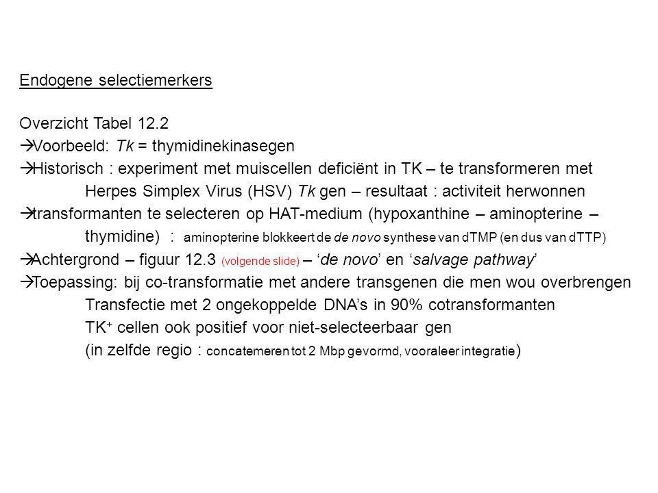 Endogene selectiemerkers Overzicht Tabel 12.2  Voorbeeld: Tk = thymidinekinasegen  Historisch : experiment met muiscellen deficiënt in TK – te trans