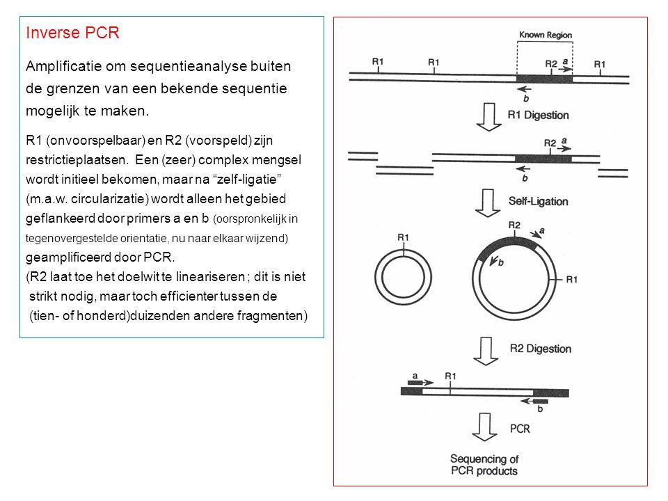 Inverse PCR Amplificatie om sequentieanalyse buiten de grenzen van een bekende sequentie mogelijk te maken. R1 (onvoorspelbaar) en R2 (voorspeld) zijn