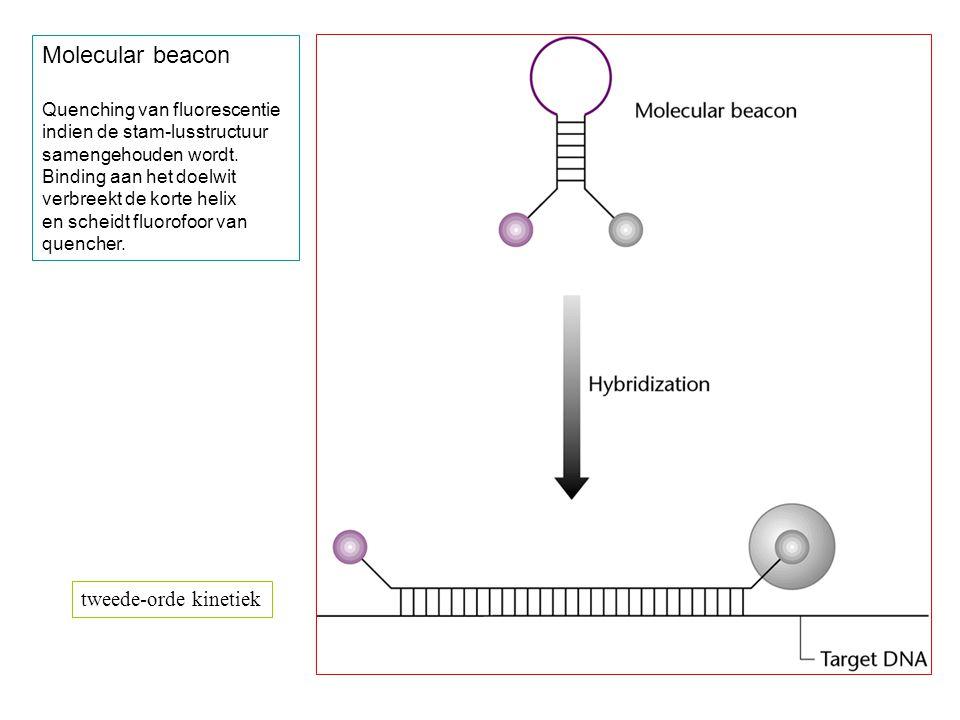 Molecular beacon Quenching van fluorescentie indien de stam-lusstructuur samengehouden wordt. Binding aan het doelwit verbreekt de korte helix en sche