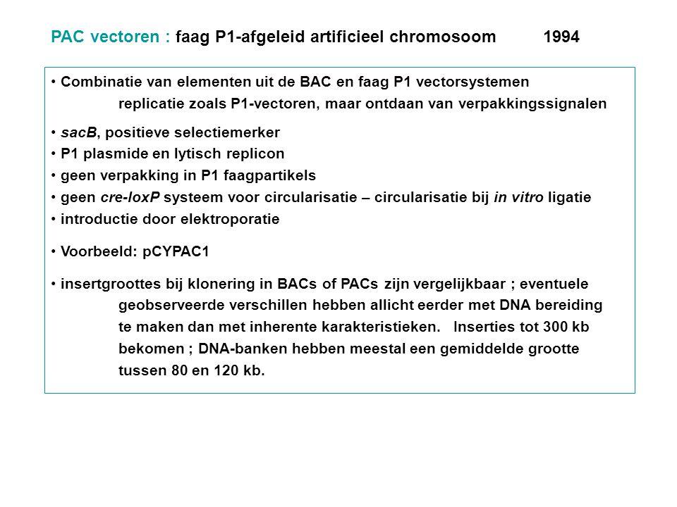 PAC vectoren : faag P1-afgeleid artificieel chromosoom 1994 Combinatie van elementen uit de BAC en faag P1 vectorsystemen replicatie zoals P1-vectoren