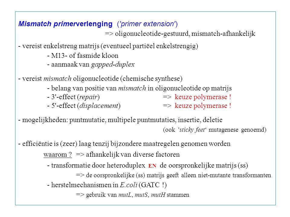 Mismatch primerverlenging ('primer extension') => oligonucleotide-gestuurd, mismatch-afhankelijk - vereist enkelstreng matrijs (eventueel partiëel enk