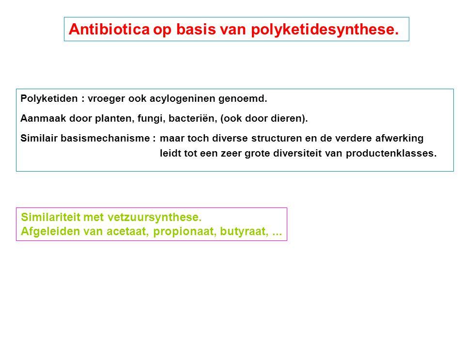 Similariteit met vetzuursynthese. Afgeleiden van acetaat, propionaat, butyraat,... Antibiotica op basis van polyketidesynthese. Polyketiden : vroeger