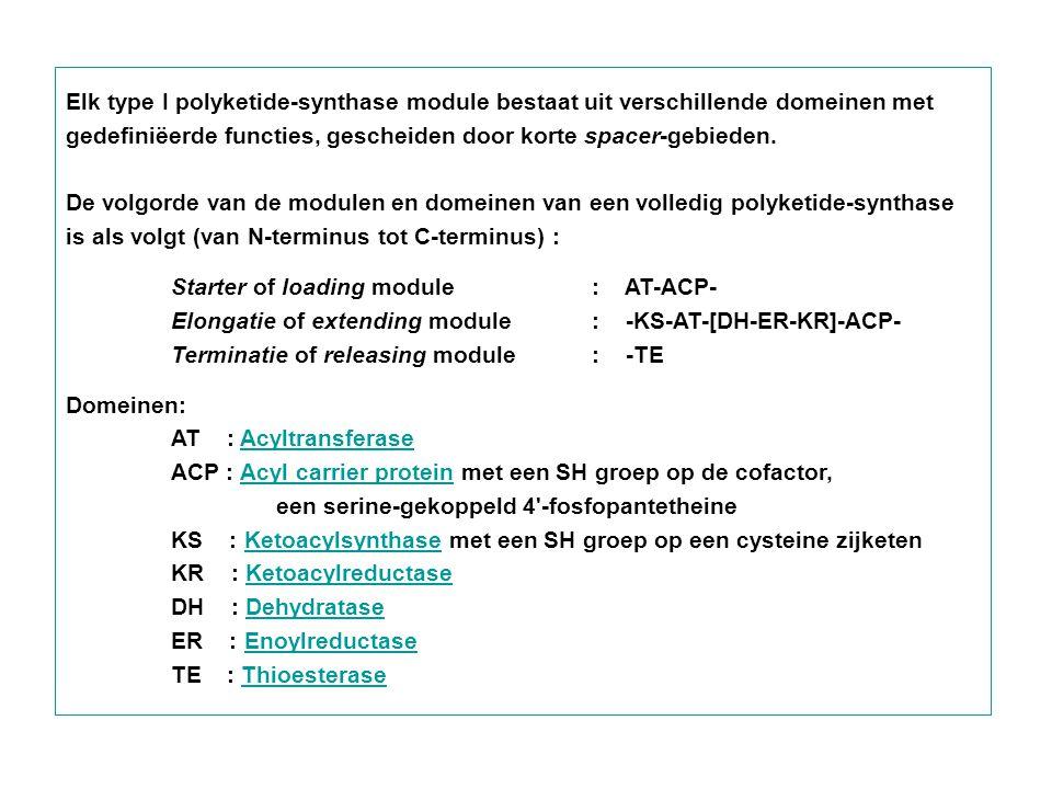 Elk type I polyketide-synthase module bestaat uit verschillende domeinen met gedefiniëerde functies, gescheiden door korte spacer-gebieden. De volgord
