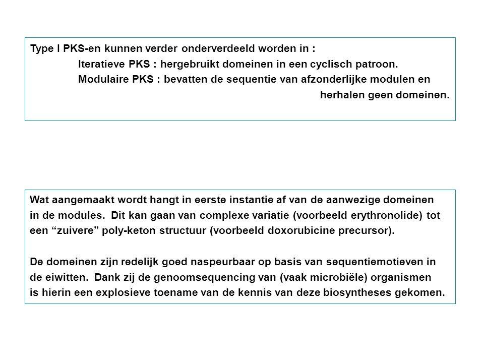 Type I PKS-en kunnen verder onderverdeeld worden in : Iteratieve PKS : hergebruikt domeinen in een cyclisch patroon. Modulaire PKS : bevatten de seque