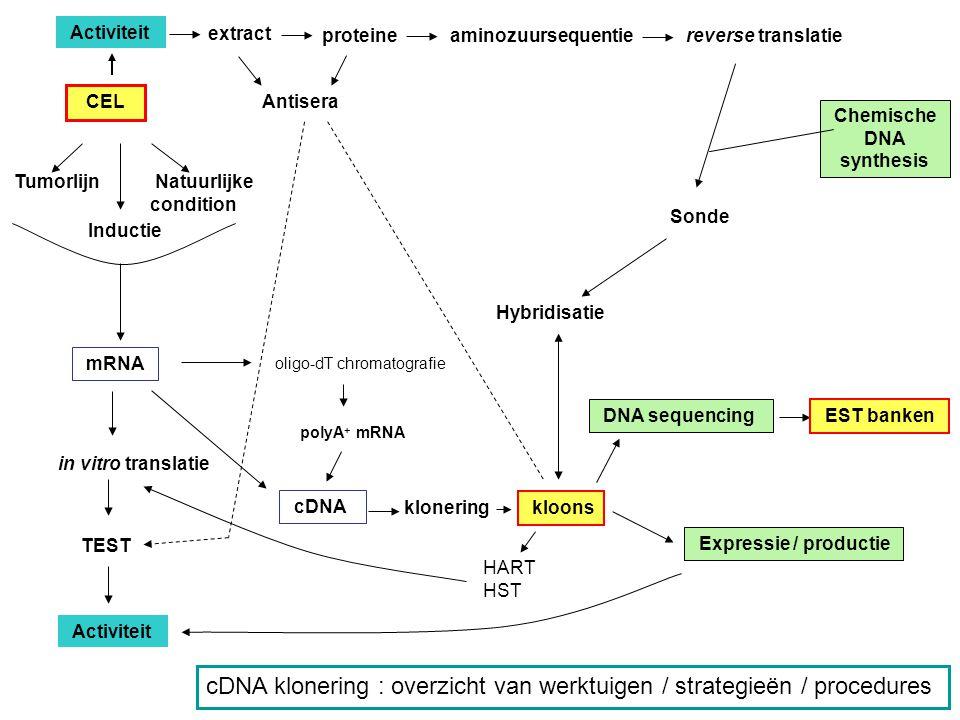 Screening - isoleren van een gen, op basis van gekende activiteit (eiwit gecodeerd door het gen) - vergelijking van toestanden (welke en hoeveel mRNA s zijn erbij betrokken?)