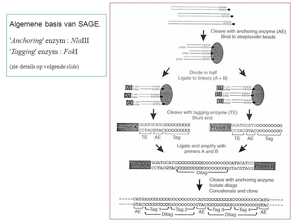 Algemene basis van SAGE. 'Anchoring' enzym : NlaIII 'Tagging' enzym : FokI (zie details op volgende slide)