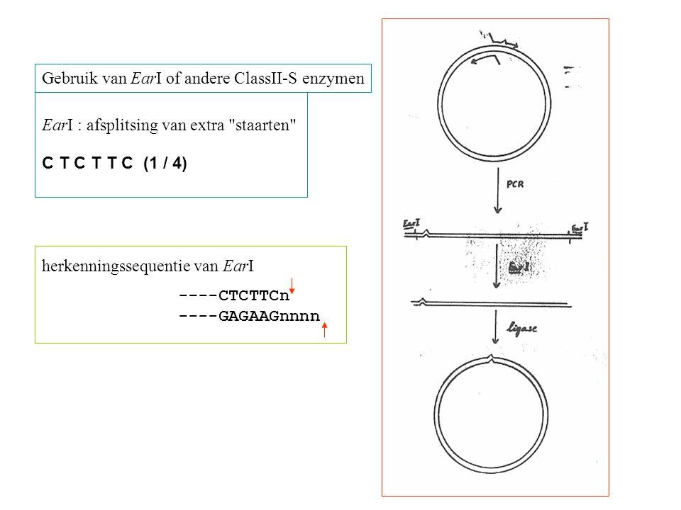 Gebruik van EarI of andere ClassII-S enzymen herkenningssequentie van EarI ----CTCTTCn ----GAGAAGnnnn EarI : afsplitsing van extra staarten C T C T T C (1 / 4)