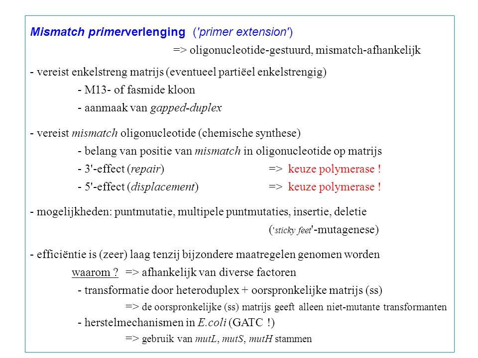 Mismatch primerverlenging ( primer extension ) => oligonucleotide-gestuurd, mismatch-afhankelijk - vereist enkelstreng matrijs (eventueel partiëel enkelstrengig) - M13- of fasmide kloon - aanmaak van gapped-duplex - vereist mismatch oligonucleotide (chemische synthese) - belang van positie van mismatch in oligonucleotide op matrijs - 3 -effect (repair)=> keuze polymerase .