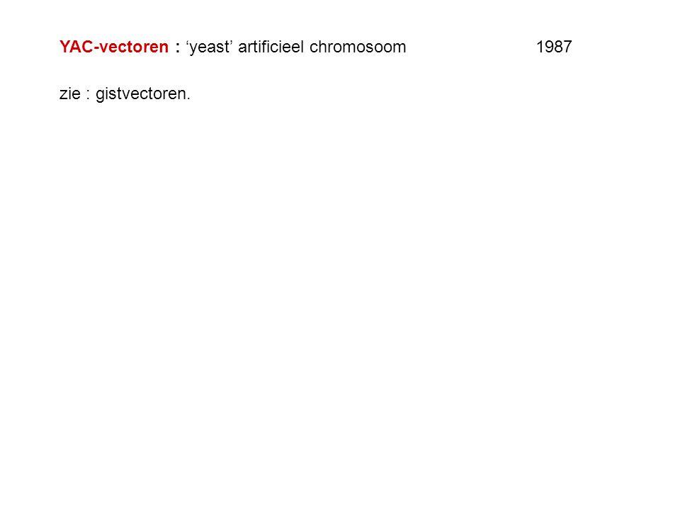 YAC-vectoren : 'yeast' artificieel chromosoom 1987 zie : gistvectoren.