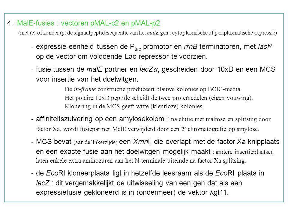 4. MalE-fusies : vectoren pMAL-c2 en pMAL-p2 (met ( c ) of zonder ( p ) de signaalpeptidesequentie van het malE gen : cytoplasmische of periplasmatisc