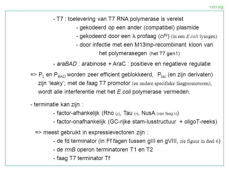 - translatie - initiatie: RBS (ribosome binding site), AUG (of GUG, 91 vs 8% in E.coli) - sequentie motief : Shine-Dalgarno sequentie RBS > < Shine-Dalgarno (SD) motief RBS = ongeveer 55 nt tussen posities –35 en + 22 (versus AUG) SD : 16S rRNA 5 ….GUACACCUCCUA OH 3 (E.coli) basispatroon : 5 ….AGGA… +/- 7nt … AUG(start)… 3 efficientie is vrij onvoorspelbaar variaties : GAGG, GGAG, GGAGG - secundaire structuur - het AUG (GUG) initiatietriplet moet goed toegankelijk zijn, bvb.