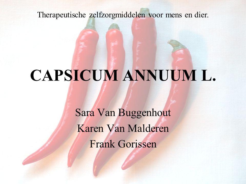 Sara Van Buggenhout Karen Van Malderen Frank Gorissen CAPSICUM ANNUUM L. Therapeutische zelfzorgmiddelen voor mens en dier.