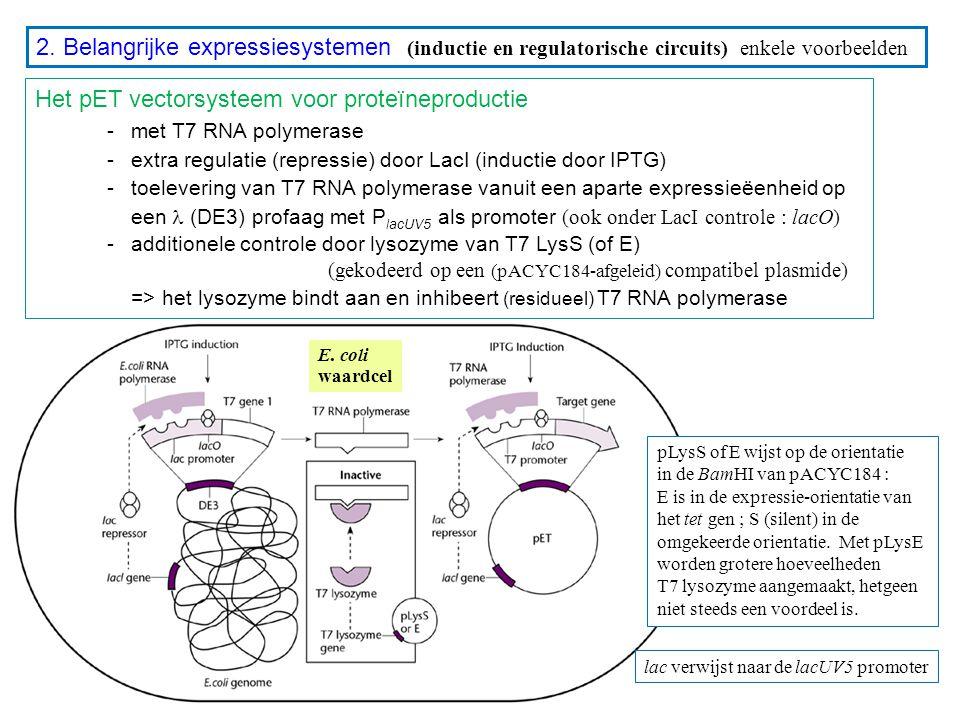 2. Belangrijke expressiesystemen (inductie en regulatorische circuits) enkele voorbeelden Het pET vectorsysteem voor proteïneproductie - met T7 RNA po