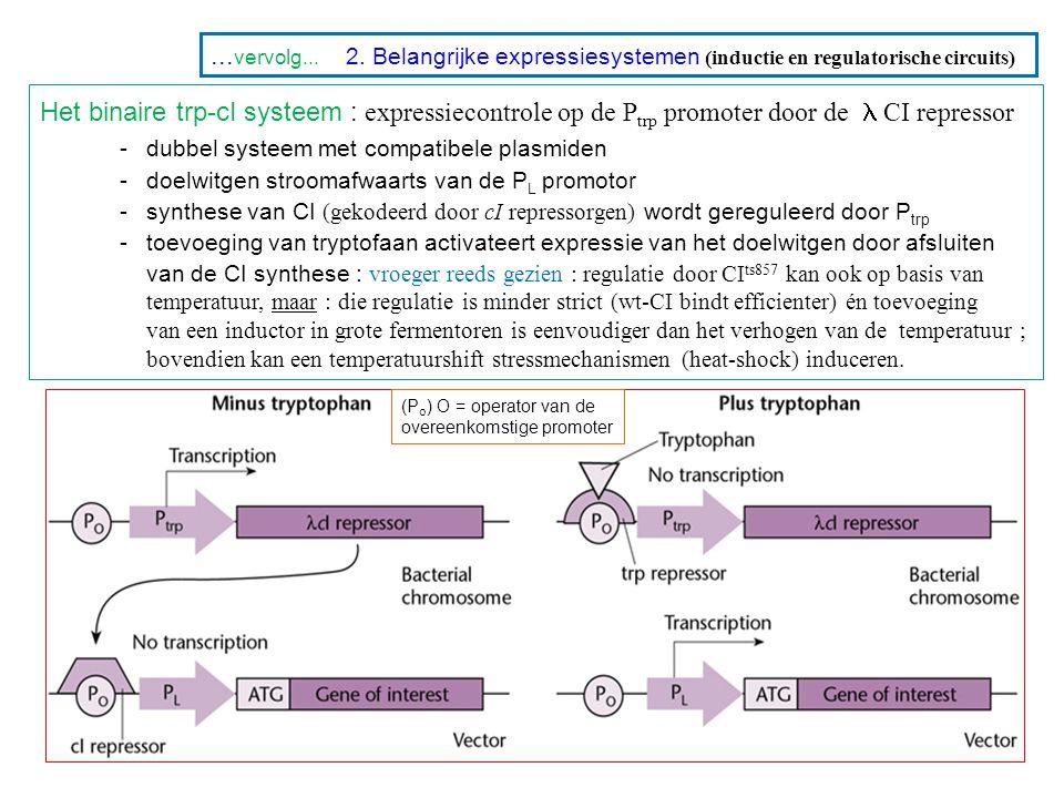 ... vervolg... 2. Belangrijke expressiesystemen (inductie en regulatorische circuits) Het binaire trp-cI systeem : expressiecontrole op de P trp promo