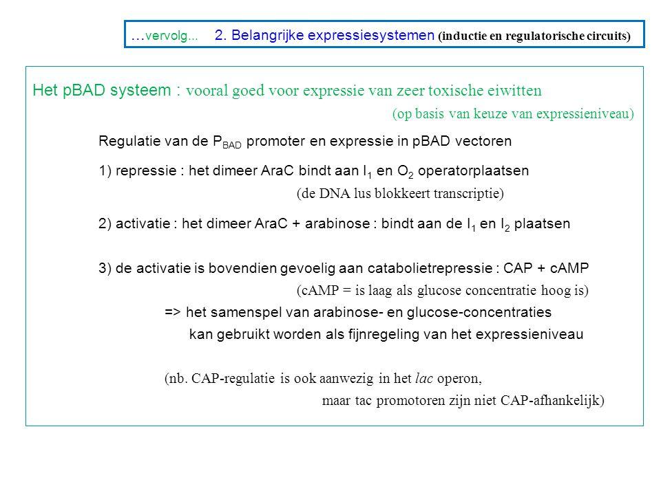... vervolg... 2. Belangrijke expressiesystemen (inductie en regulatorische circuits) Het pBAD systeem : vooral goed voor expressie van zeer toxische