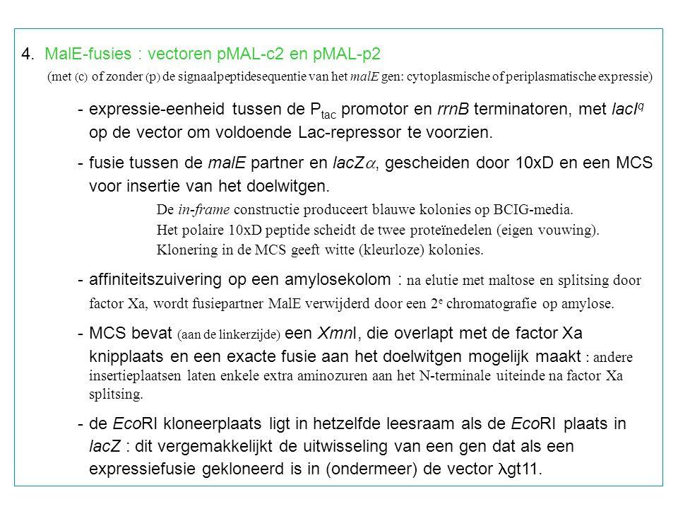 4. MalE-fusies : vectoren pMAL-c2 en pMAL-p2 (met ( c ) of zonder ( p ) de signaalpeptidesequentie van het malE gen: cytoplasmische of periplasmatisch