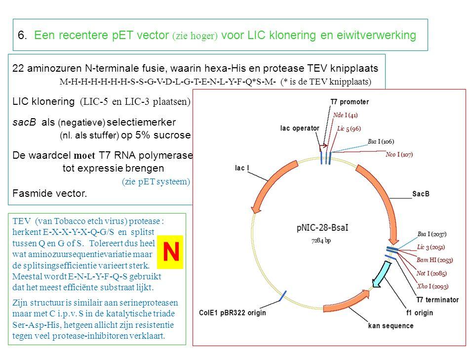 22 aminozuren N-terminale fusie, waarin hexa-His en protease TEV knipplaats M-H-H-H-H-H-H-S-S-G-V-D-L-G-T-E-N-L-Y-F-Q*S-M- (* is de TEV knipplaats) LIC klonering (LIC-5 en LIC-3 plaatsen) sacB als (negatieve) selectiemerker (nl.