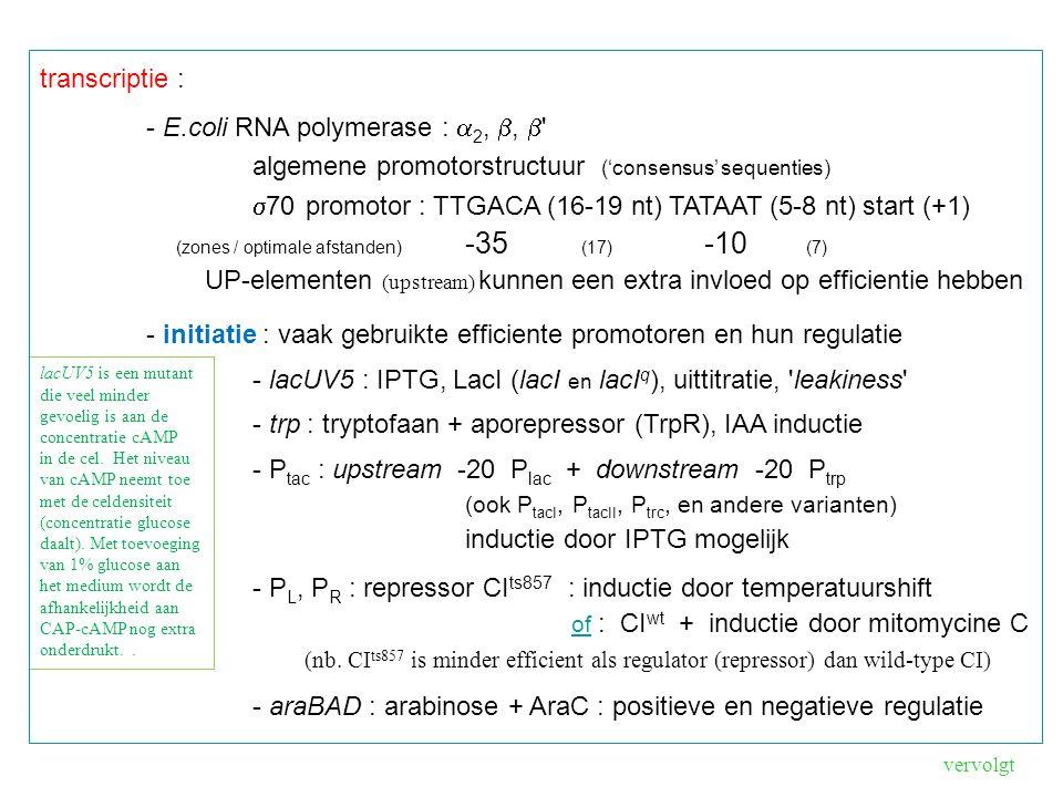 lacUV5 is een mutant die veel minder gevoelig is aan de concentratie cAMP in de cel.