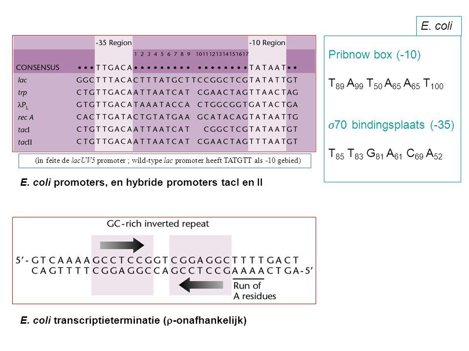 Pribnow box (-10) T 89 A 99 T 50 A 65 A 65 T 100  70 bindingsplaats (-35) T 85 T 83 G 81 A 61 C 69 A 52 E. coli E. coli promoters, en hybride promote